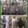 Christmas Trees for our Troops